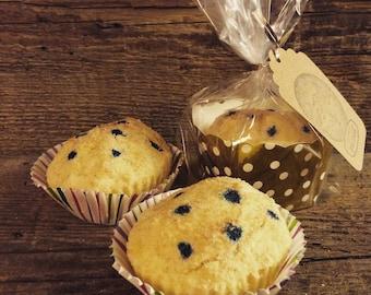 Blueberry Muffin Bath Fizzy