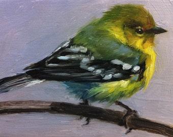 Tiny Pine Warbler - Little Bird Painting - Open Edition Print