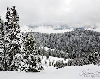 "Yellowstone Snow Photography   ""Dunraven Pass Winter""   Yellowstone Winter Photo - Yellowstone Print - Winter Wall Art - Snow Wall Art"