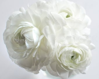 White Flowers / Elegant White Ranunculus / Styled Stock Photography / Wedding Image / Stock Photo / Digital Background / Product Photo