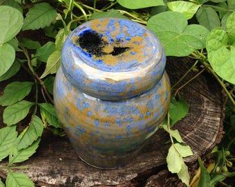 Pet Urn Dog Cremation Urn for Medium Pet Up to 35 lbs