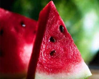 Sugar Baby Heirloom Watermelon Seeds Grown To Organic Standards Excellent Flavor Small Size Melons
