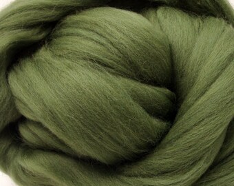 4 oz. Merino Wool Top - Pickle
