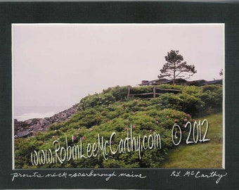 138 5x7 Matted Photo no. 138 Prouts Neck Scarborough Maine Signed