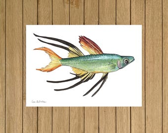 Threadfin Rainbow, Tropical Fish, Giclée Print, Watercolor illustration, A3 A4 and A5 size
