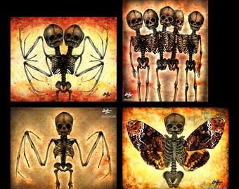 "Prints 8x10"" - Skeletons - Skull Dark Art Horror Bones Lowbrow Art Gothic Taxidermy Bats Death Moth Haunted Zombie Grave Conjoined Monster"