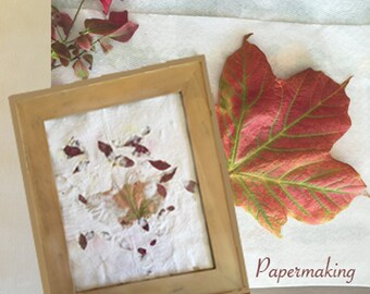 Framed Paper Art, handmade recycled paper, midwest flora, maple leaf, burning bush leaves, a colorful theme, decorating