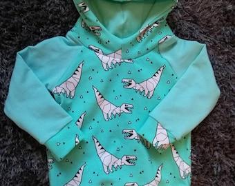 Dinosaur Hoody Childrens sizes 6 months - 6 years, Dinosaur Sweatshirt, Mint Dinosaurs.