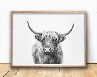 Highland Bull, Digital Prints, Farmhouse Decor, Black And White, Highland Cow, Art Print, Printable, Photography, Boho, Digital Download