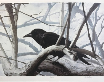 Carl Arlen 'Raven' - Hand Signed Print - Birds - Others Available - GallArt