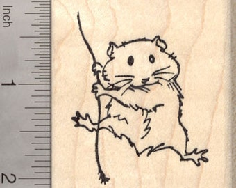 Hamster Rubber Stamp, Swinging on Rope  H21204 Wood Mounted