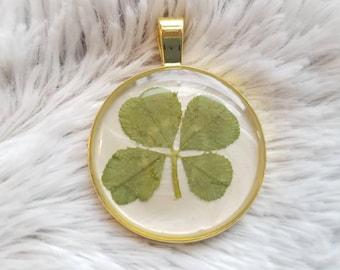 Genuine Real Lucky Four Leaf Clover Pendant #148