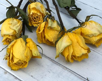 Dried roses, air dried roses, dried flowers, yellow dried Rosses