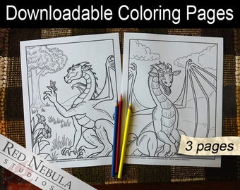 Coloring Pages 26-28 - Shella the Dragon, Young Adult Coloring Page, Fantasy Coloring Book Pages, Grown Up, Butterfly, Flying, Bear Friend