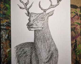 A2 Pencil / Pen Drawing / Original Art - The Deer