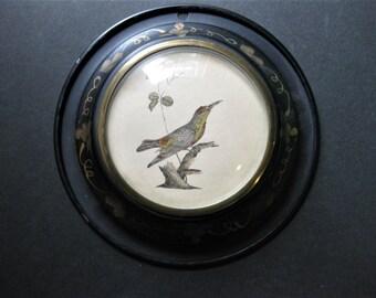 Small Tin Framed Bird Print, Gold Floral on Black Tin