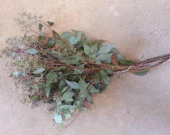 Fresh Cut Seeded Eucalyptus
