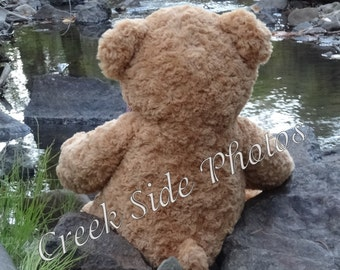 Instant Digital Download, Teddy Bear, Whimsical, Cute, Creek, Nature, Nursery Decor, Baxter Bear, Wall Art