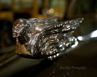 1940 Cadillac Hood Ornament print