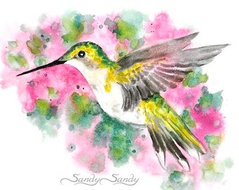 Hummingbird Print - H.