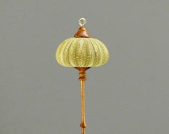 Hanging Ornament- Green Sea Urchin & Walnut  (OR67)