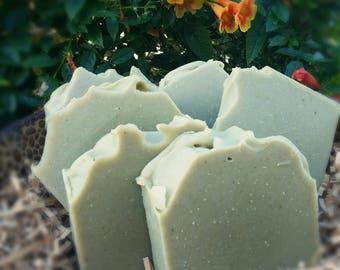 Dead Sea Mud & Spinach Coconut Milk Vegan Unscented Soap