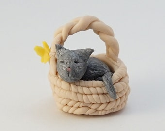 Sleeping Kitten In A Basket