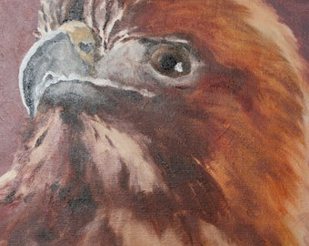 "Red Tailed Hawk Profile: Oil Paint on Canvas, 8"" x 10"", Wildlife Art by Joel Kratter"