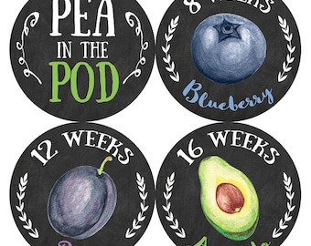 Belly Stickers, Pregnancy Stickers, Maternity Stickers, Belly Bump Stickers, MINI FRUITS SET, Petite Folio