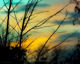Sunset Evening Sky Tree Branches Turquoise Aqua Blue Orange Black Landscape Nature Fine Art Photography Print or Gallery Canvas Wrap Giclee
