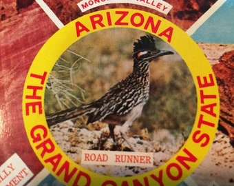 """MAYniaSALE Vintage 1980s Arizona """"the Grand Canyon State"""" depicts a road runner, Canyon De Chelly, Petrified Forest Monument Valley, and Gra"""
