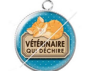 Cabochon resin cameo for veterinarian 11