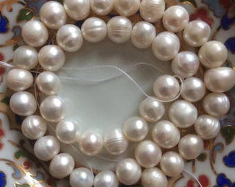 Set of 10 white fresh water cultured pearls / ivory size 9-10 mm