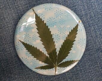 Pressed Cannabis Leaf Button On Blue Flower Background