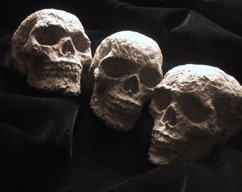 Small Paper Mache Human Skulls - Lot of 3 - Halloween or Dia De Los Muertos Decoration