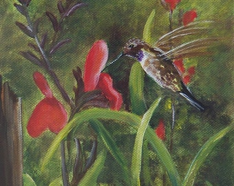 The hummingbird in the yard aceo Limited edition