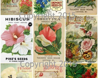 Printed Vintage Victorian Seed Packs Flowers Collage Sheet   8.5 x 11 Printed Sheet, Decoupage, Altered Art, Labels, Collage,