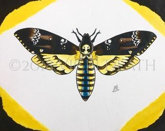 Acherontia Atropos Study Original Painting