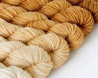 WHEATEN 480 yard gradient yarn mini-skein set, American Sock, superwash, merino, fingering weight, sock yarn, gradient, ombre