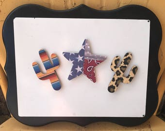 Custom request -Southwestern magnets - Texas magnet - Cactus magnet 2 sets