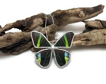 butterfly jewelry, handmade real butterfly pendant, real butterfly jewelry, butterfly necklace,real moth pendant, Urania luilus moth Pendant