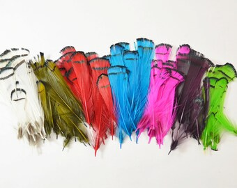 Pick your Own - Lady Amherst Pheasant Feathers