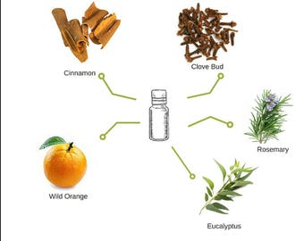 Germs Away Bundle Essential Oils, Roller Ball, Hand Spray Peppermint, Clove, Cinnamon, Essential Oils.