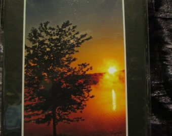 5x7 Matted Photo - Seasons (Set of 4)