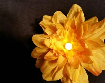 Lighted flowers for relaxing night light or mood enhancer while you bath.