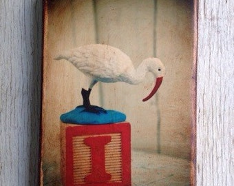 Vintage Toy I is for Ibis Art/Photo - Wall Art 4x6