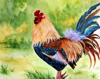 Colorful Rooster Aceo reproduction of my original painting