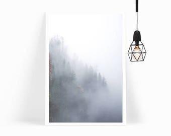 Wall Art,Poster,Prints,Home Decor,Art Print,Gift,Forest,Nordic,Photography,Living Room Decor,Modern Art,Framed Art,Tropical,Botanical