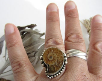 Ammonite Sterling Silver Ring size 7