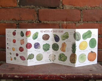 40 Weeks of Baby Bump Accordion Card   Fruit and Vegetable Pregnancy Baby Shower Gift